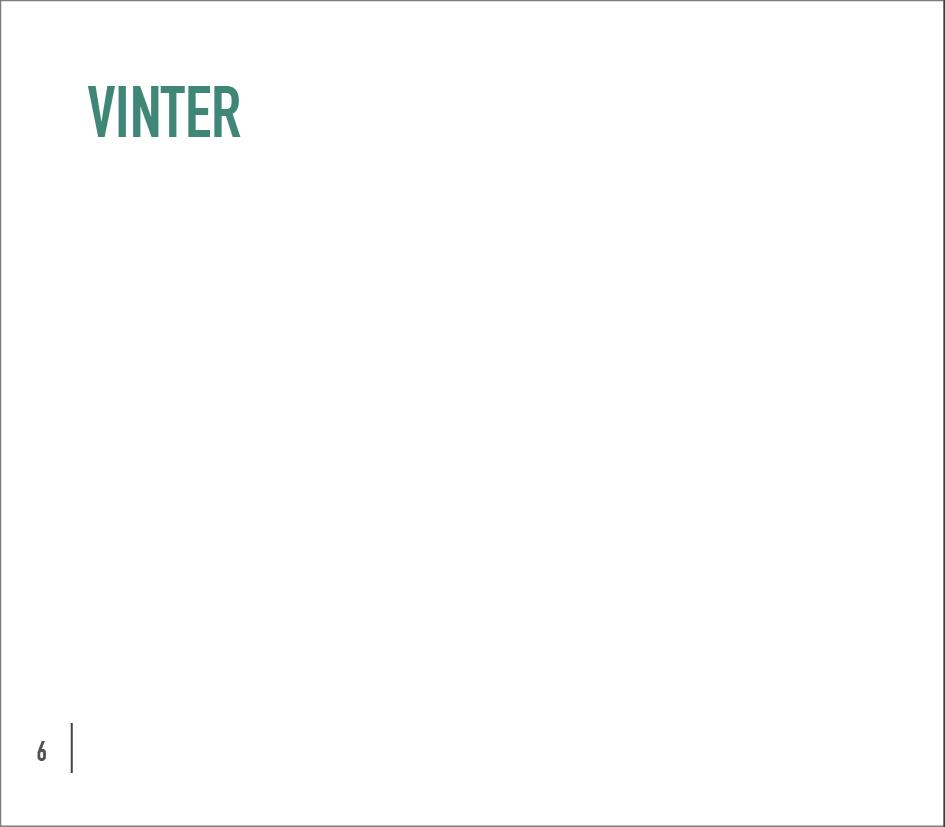 Kjoler & Kjortler Katalog Oppskrift med rammer4